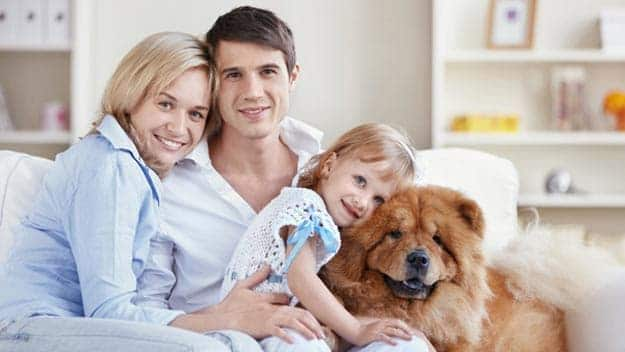 Wills & Trusts dog-young-family Direct Wills Eastcote